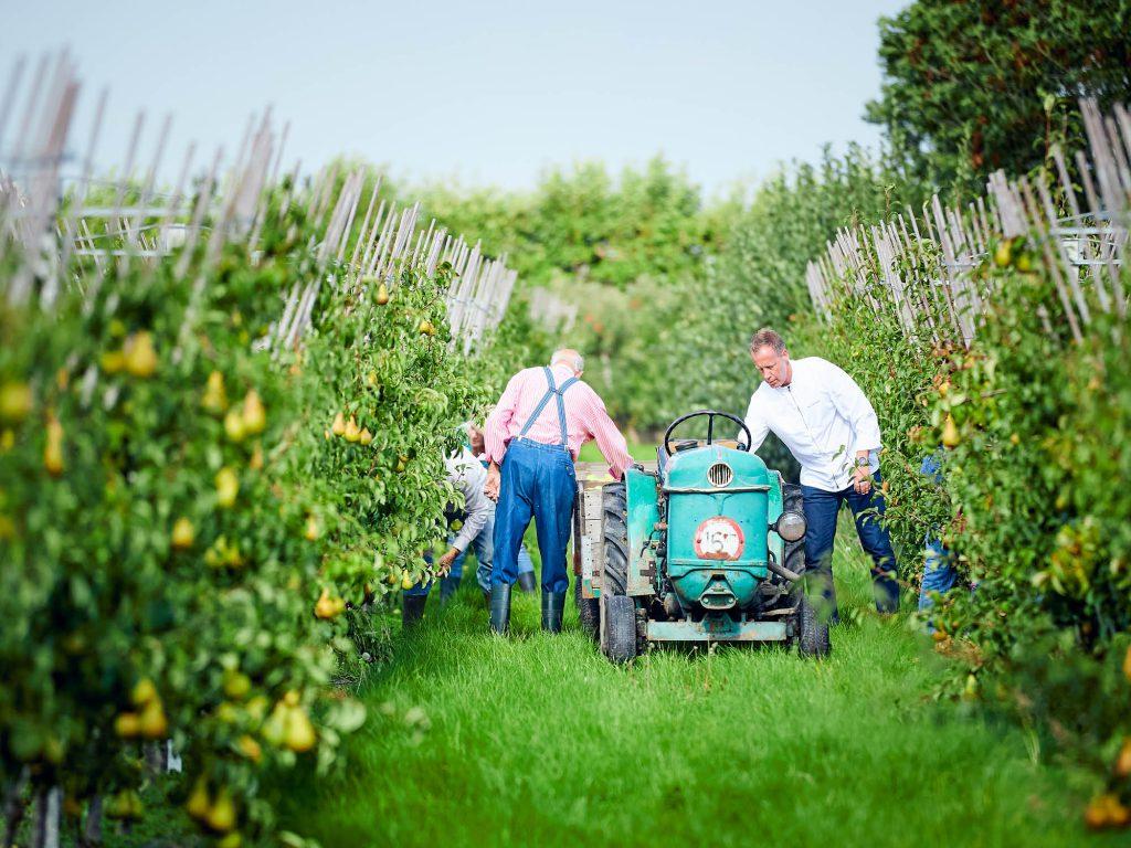Chefkok Paul de Graaf van het Poterne restaurant & Fort Resort Beemster haalt zijn appels & peren bij eerlijk & heerlijk in de Zuidoostbeemster.